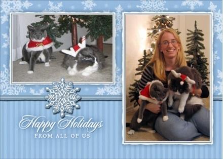 christmas-card2.jpg