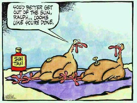turkey belly button